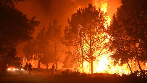 Wildfire at California